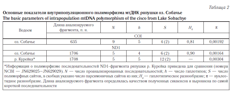 Morphological and genetic features of cisco (coregonidae
